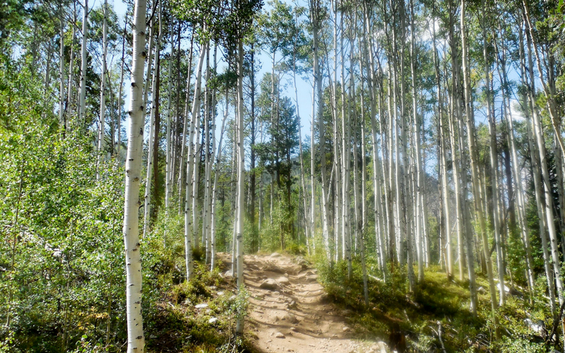 Sweet Family Friendly Colorado Hiking Gem