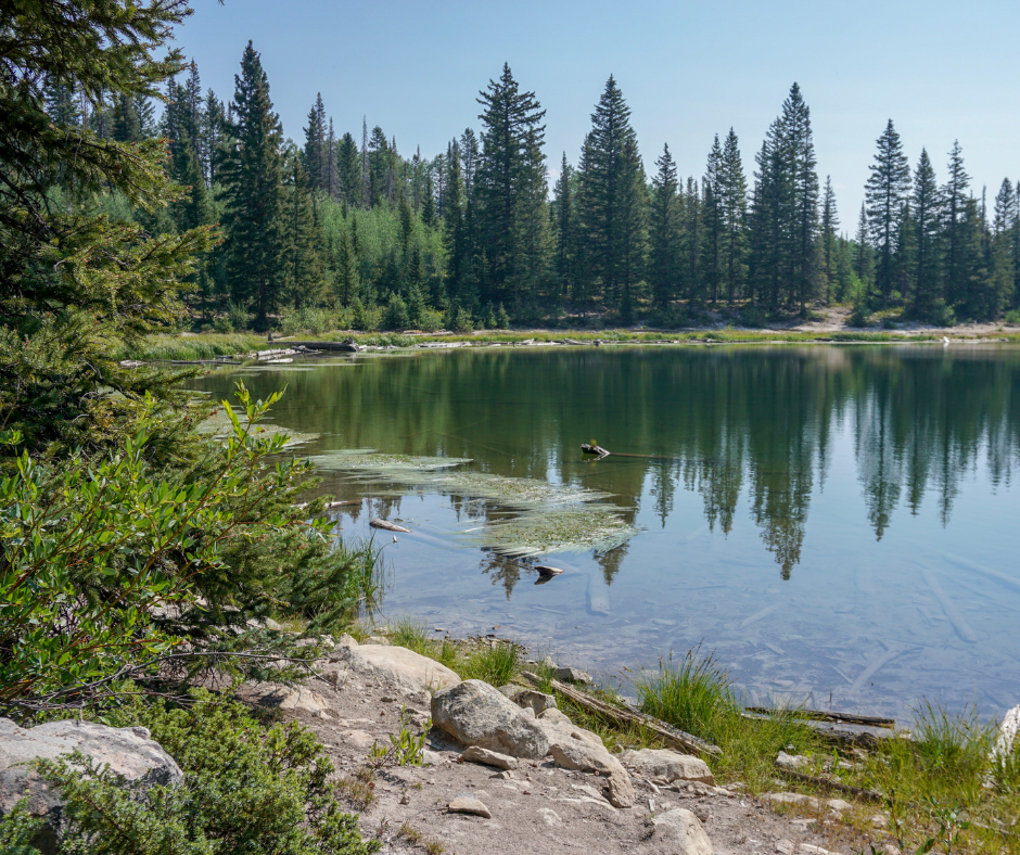Dollar Lake, Colorado hikes, hiking trails on Kebler Pass, Lost Lake campground, best fishing lakes in Colorado, best hikes in Colorado, hiking near Gunnsion, Crested Butte, things to do on Kebler Pass, Aspen viewing in Colorado, best Aspen hikes in Colorado