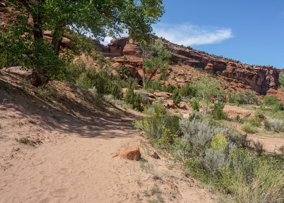 Hiking Dominguez Canyon, Solitary & Rugged in Colorado's Western Slope