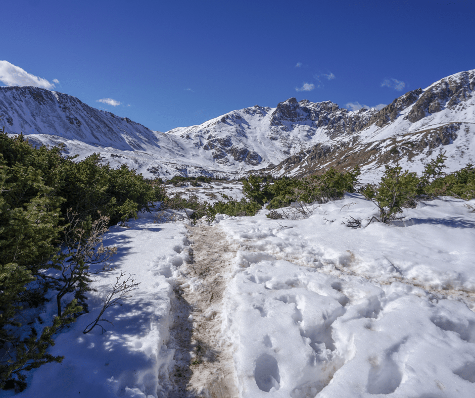 Herman Gulch, Colorado hikes, best hikes in Colorado, Hiking trails, hike, snowshoe, winter hikes in Colorado, best wildflower hikes, Colorado wildflower hikes, Colorado Lake hikes