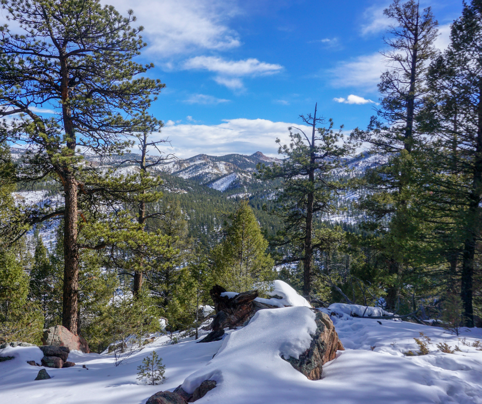 Colorado hikes, USA hikes, day hikes, moderate hikes, Hiking trails in Woodland Park, Hiking near Colorado Springs, HIKE, mountain biking trails, Platte River Trail, South Platte,