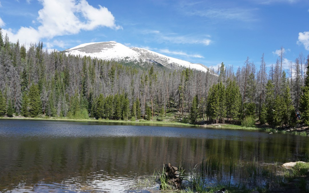 Lily Pad Lakes Trail is Unforgettable
