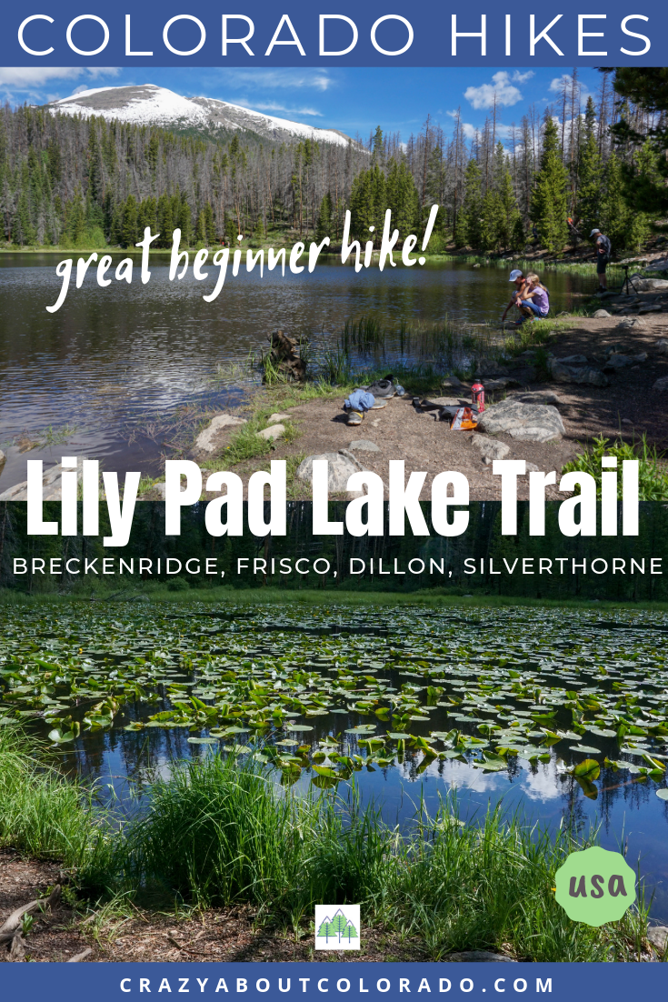 Lily Pad Lakes Trail, Summit County hikes, day hikes, family hikes, hikes near Breckenridge, hikes for kids, lake hikes, where to go in Summit County, Colorado Hikes, easy hikes, hiking, hiking trails