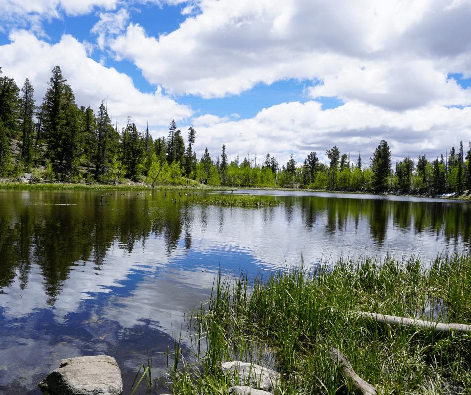 USA hikes, best hiking trails in Colorado, Harvard Lakes Trail, hikes near Buena Vista, crazyaboutcolorado, how to get to Harvard Lakes, Mt Columbia, 3 Elk Trail,