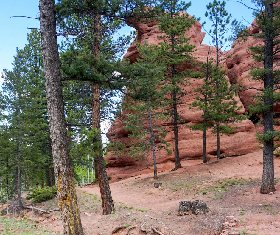 Red Rock Trail, Woodland Park hikes, hiking trails, what to see near Colorado Springs, off the beaten path in Colorado, Colorado hikes, Divide CO, Hikes near Colorado Springs,