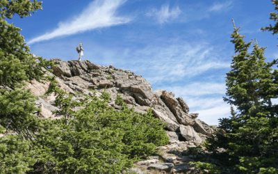 Chief Mountain Trail, a Hike to the Summit