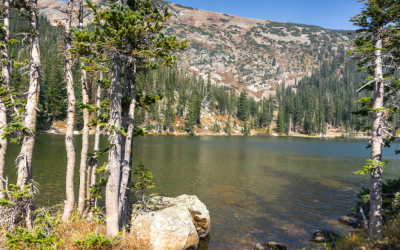 Crater Lakes Trail the Perfect Day Hike