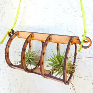 tube shaped wooden air plant holder