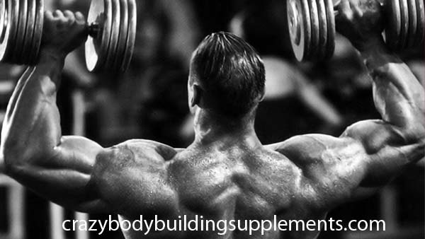 bodybuilding workouts 1fb1d9