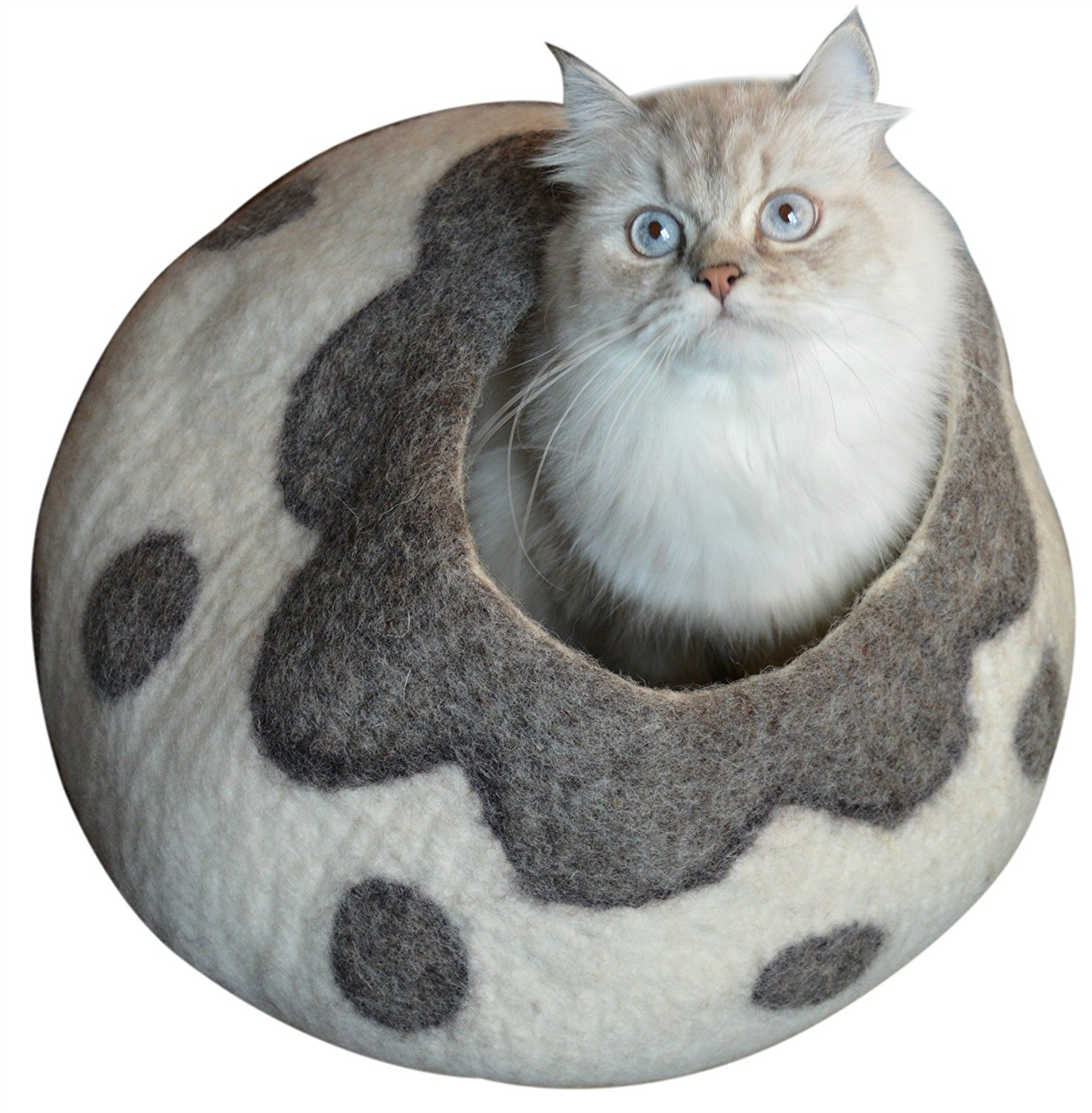 aspen pet sofa bed for dogs cats assorted colors bls dark grey set cat beds archives crazy lady supplies