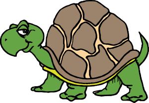 Crazy Critters cartoon tortoise logo