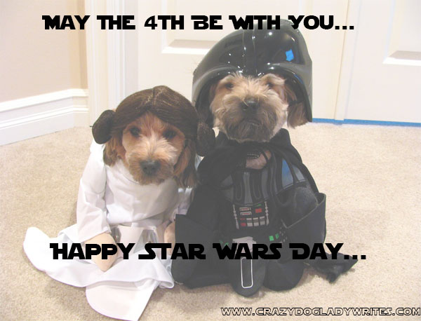 crazy-dog-lady-writes-star-wars-day