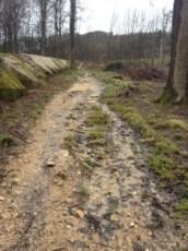 Der Trail wird zum Bach