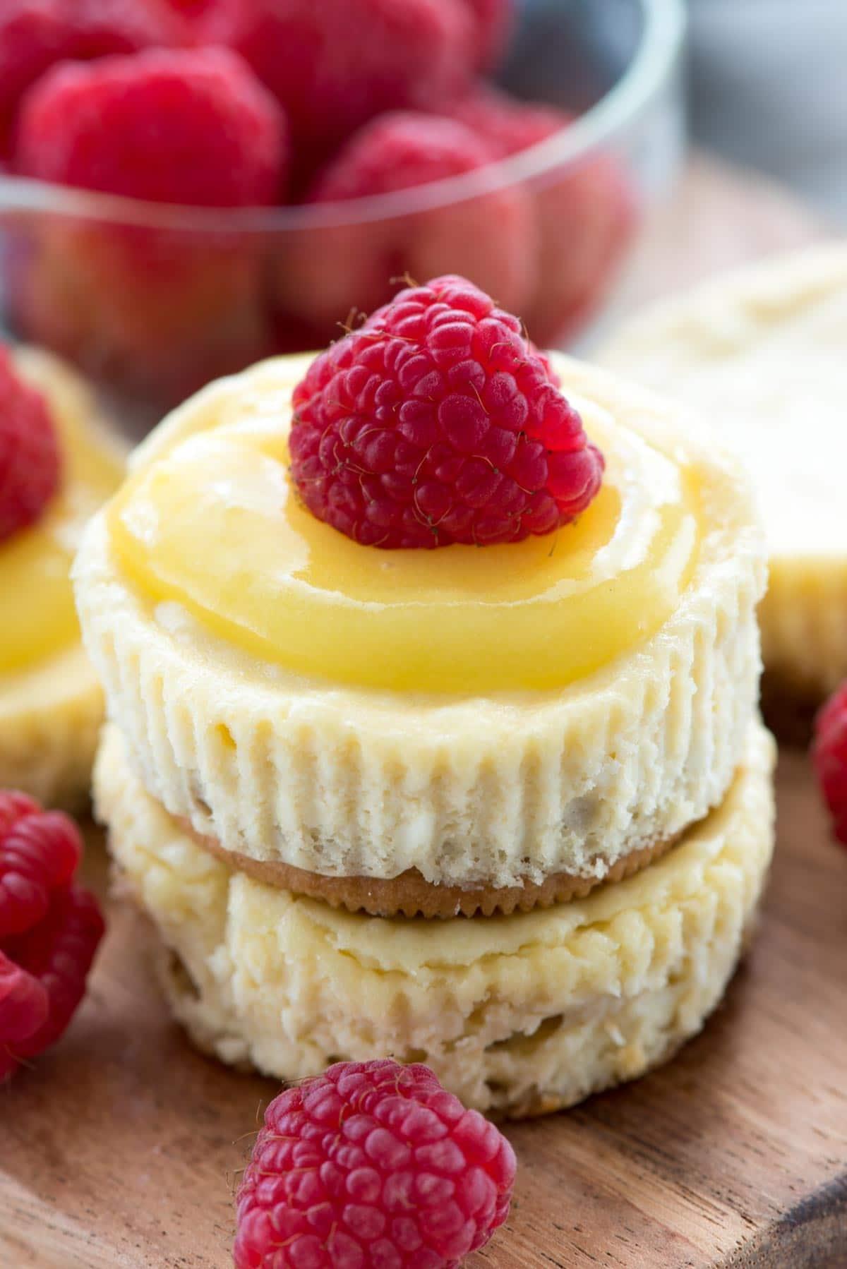 No Bake Mini Cheesecake Graham Cracker Crust