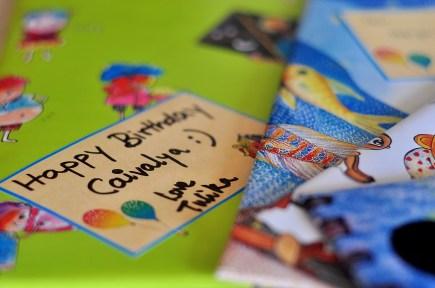 Birthday Gift from Tullika!