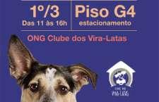 Iniciativa já contabiliza 11 edições e encontrou novos lares para mais de 150 cães.