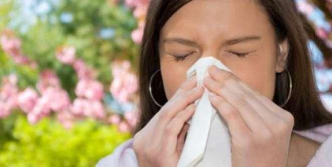 Apesar dos desconfortos durante os períodos de crise alérgica, existem algumas formas de amenizar os sintomas e até mesmo evitar o problema.