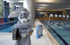 O coelhinho da Páscoa vai ter muito trabalho nas unidades Reebok Sports Club da Cidade Jardim e Vila Olímpia, em São Paulo (SP).