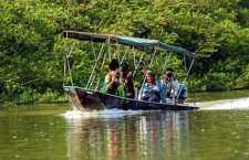 Passeio pelo pantanal mato-grossense:Escolhido por cerca de 500 milturistaschineses, o bioma ficou em primeiro lugar na categoria experiências de viagens incríveis.