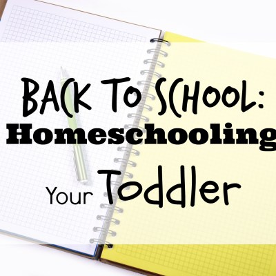 Back to School: Homeschooling Your Toddler