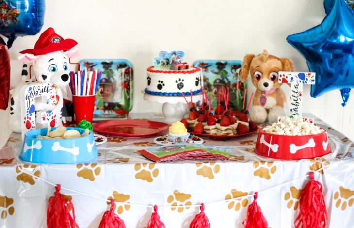PAW PATROL BIRTHDAY PARTY
