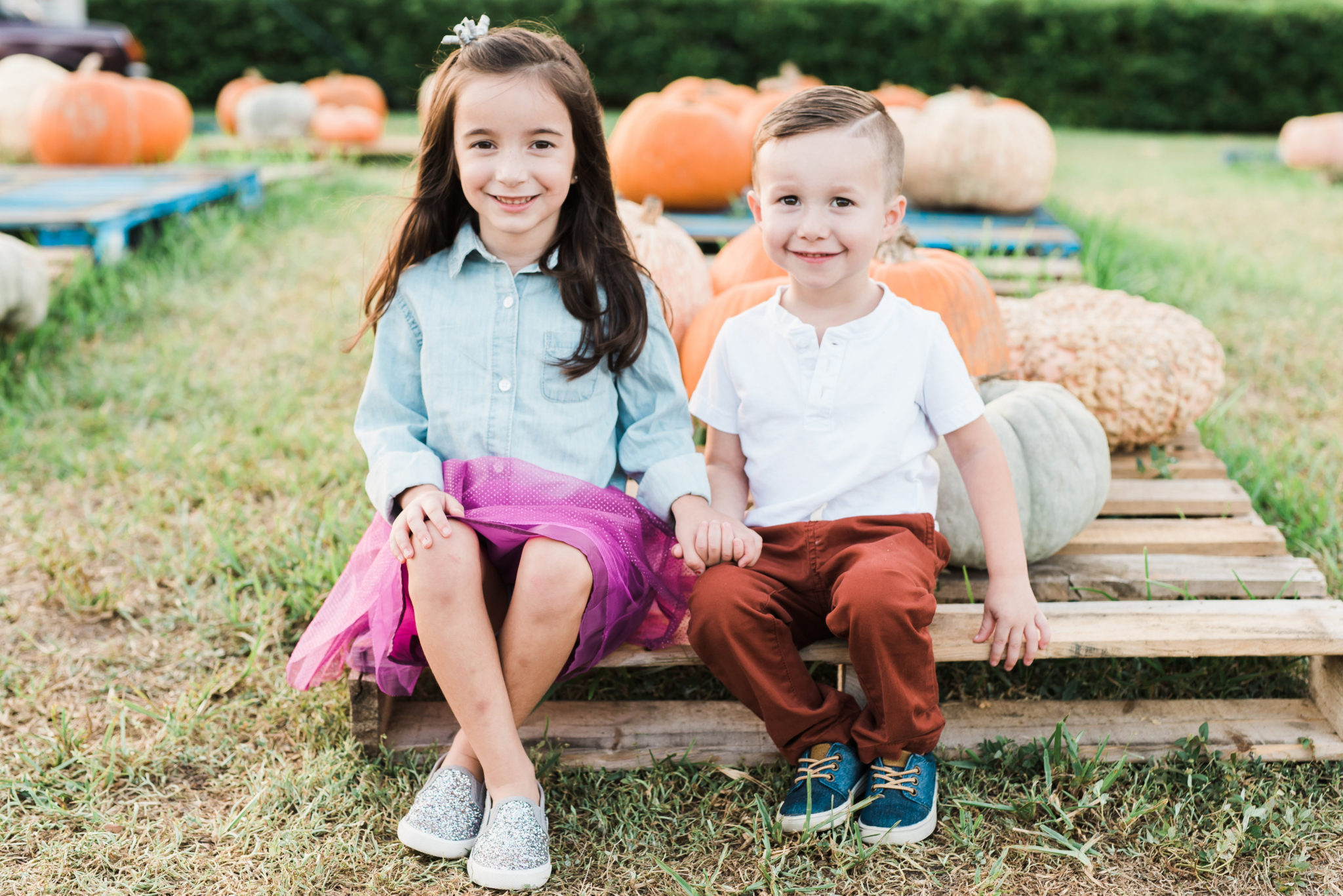 fall family mini sessions in a pumpkin patch, spring hill family photographer, hernando county wedding and portrait photographer, Tampa parenting blog mothers blog motherhood blog Florida travel blogger travel influencer healthy mom blogger spring hill florida lifestyle parenting blog best mom blog 2018