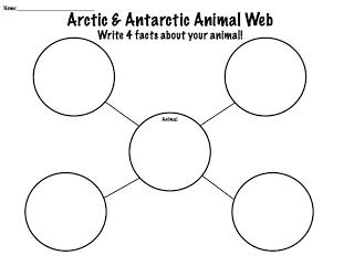 Arctic & Antarctic Animal Language Packet