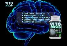 Vito Brain