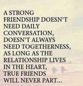 Best-Friendship-Quotes1