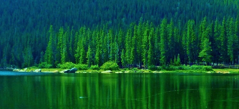 Green Scene slider