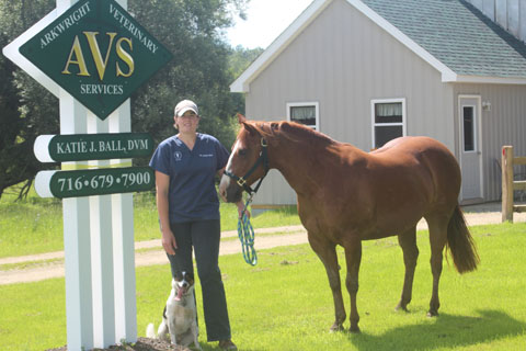 Katie J. Ball, DVM stands outside of her small animal care clinic, Arkwright Veterinary Services. Ball also provides mobile routine and emergency veterinary services to horses and other large farm animals in Chautauqua and Cattaraugus Counties