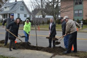 City of Jamestown and CRCF Partner to Plant Trees