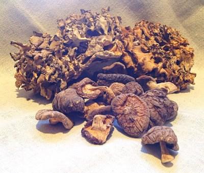 Dried Shiitake & Maitake Mushrooms