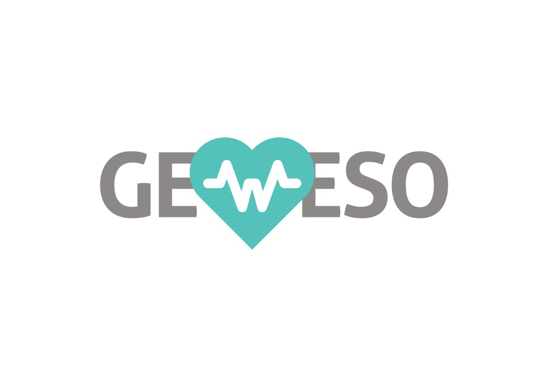 GeWeSo 1