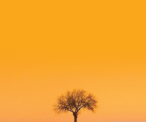 Дизайн корпоративной поздравительной открытки ко дню Банкира - 2013 | Михаил Литюга | Киев