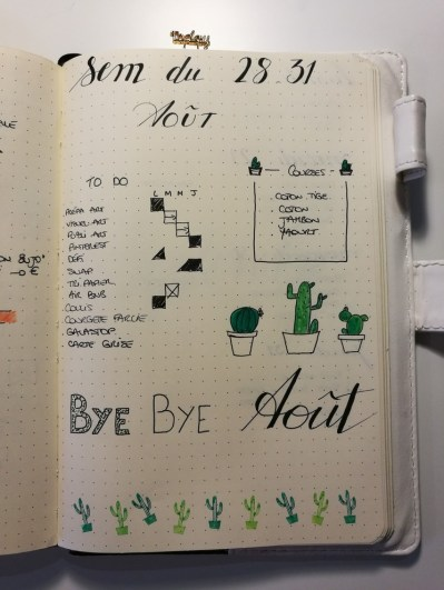 Weekly log - cactus - Bullet journal
