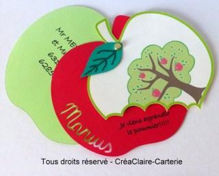 faire-part naissance personnalisé pomme prénom découpe-vue ouvert