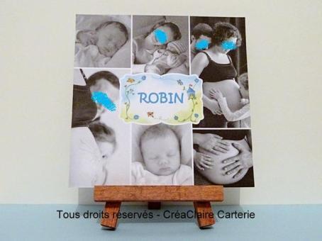 Zoiseaux et photos - Ref : MOD-029