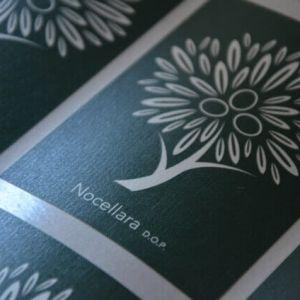 Creation and design of the label Nocellara