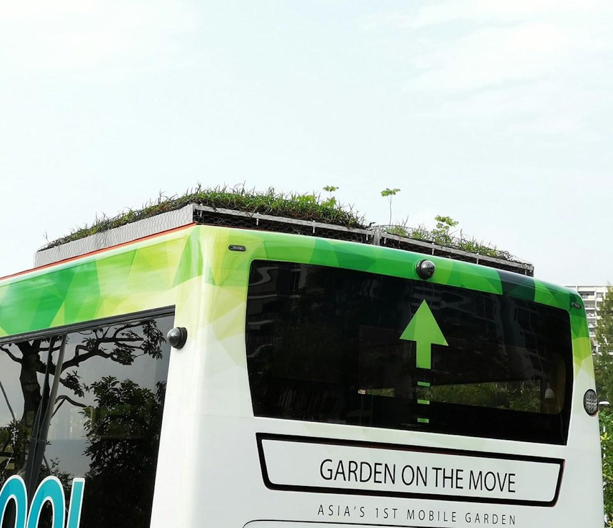 Singapour bus végétalisés