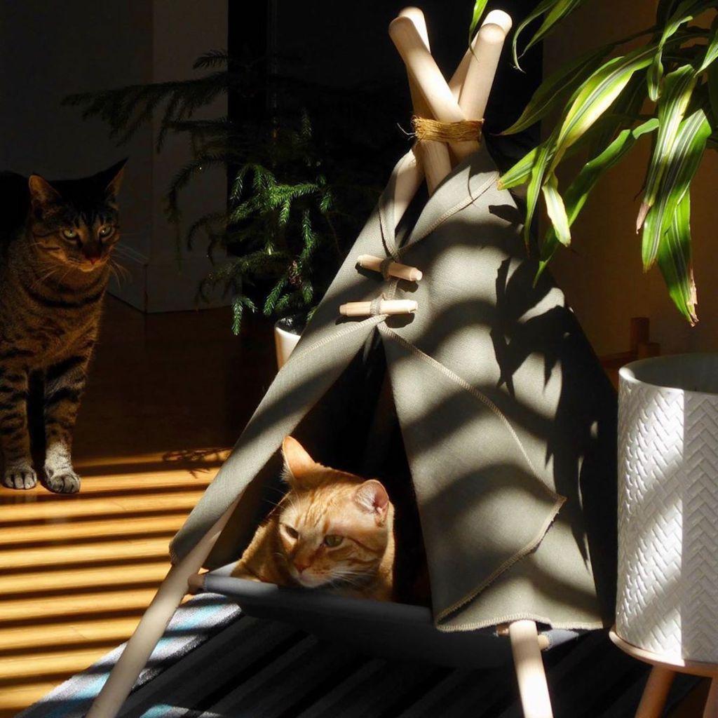 Tipi Pour Chat A Fabriquer pour les chats aventuriers, cette société commercialise des