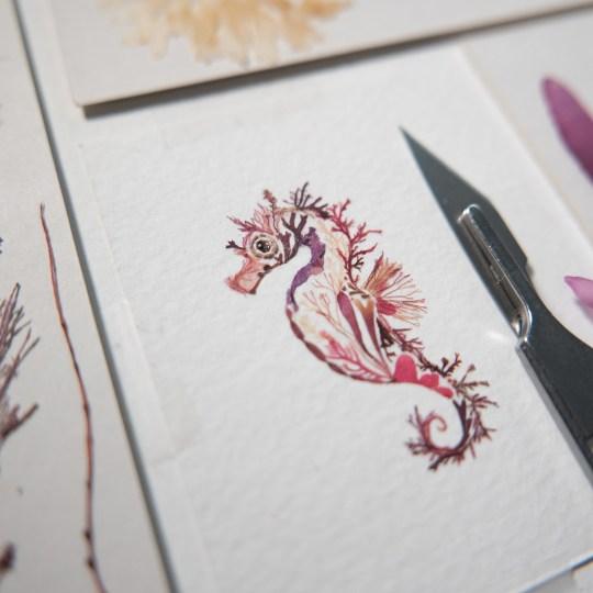 Helen Ahpornsiri compose des animaux avec des fleurs séchées