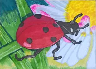 #4 - Ladybug