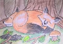 #42 - Kuschelnde Füchse