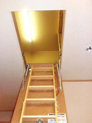天井からは、なんと梯子が降りてきます