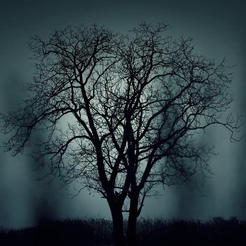 coté sombre