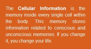 Cellular Information and its Programming