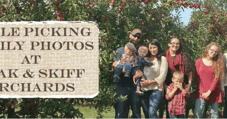 Apple Picking Family Photos At Beak & Skiff Orchards