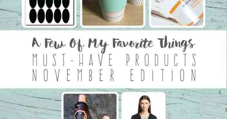 A Few Of My Favorite Things   Must-Have Products   November Edition
