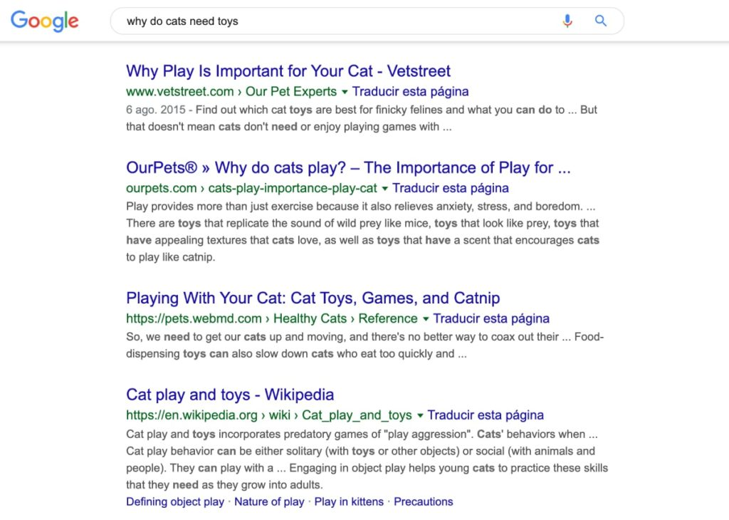 cat toys user intent search